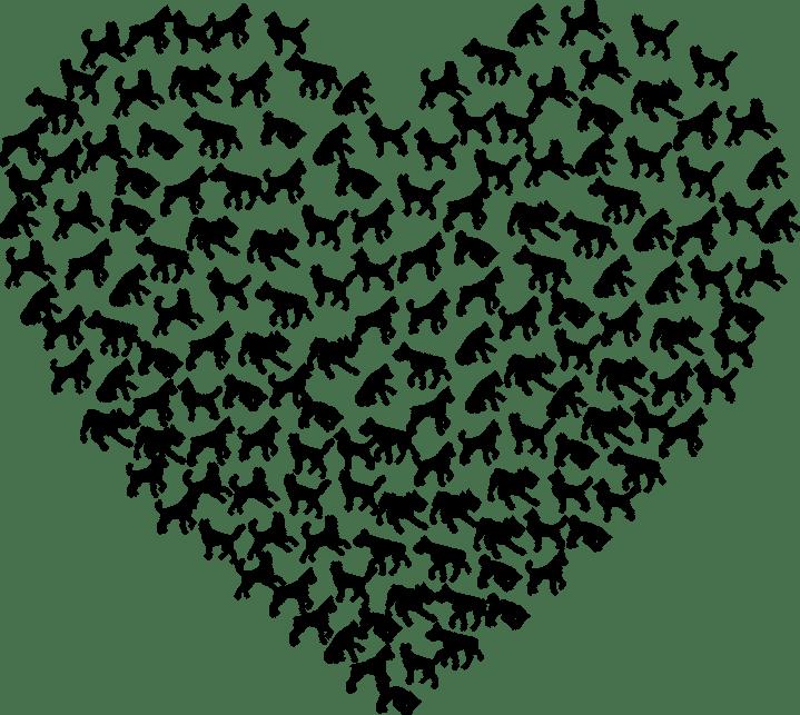 heart-2766276_1280