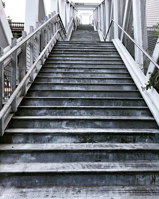 step-3183039_1920