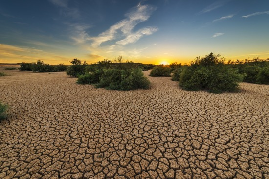drought-1675729_1920